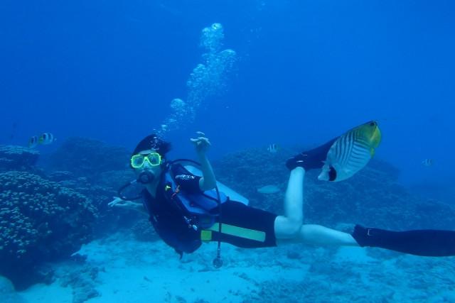 綺麗な海でダイビングをする人